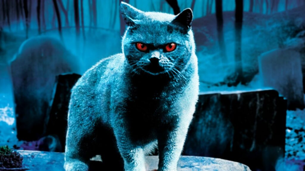 NFW Podcast – Episode 347 – PET SEMATARY (1989)